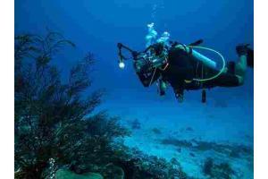 Corso tecnico subacqueo 100% online in tutta Italia